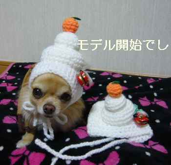 blog2011121203.jpg