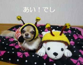 blog2011121803.jpg