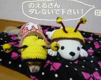 blog2011121804.jpg