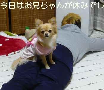 blog2011122003.jpg