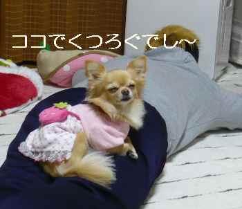 blog2011122004.jpg