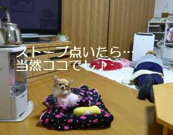 blog2011122005.jpg