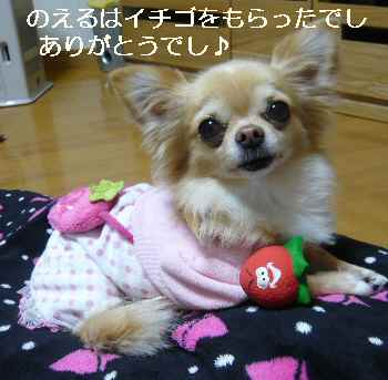 blog2011122104.jpg