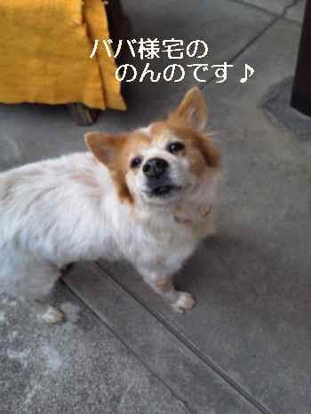blog2011122105.jpg