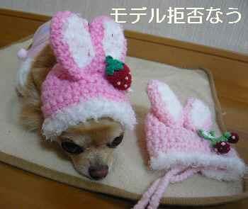 blog2011122206.jpg