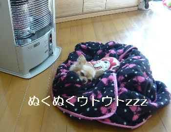 blog2011122502.jpg