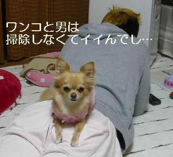 blog2011122902.jpg