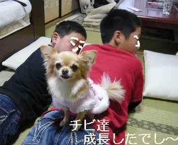 blog2012010201.jpg