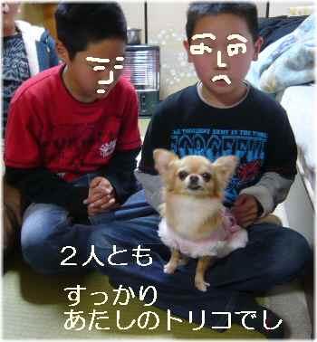 blog2012010202.jpg