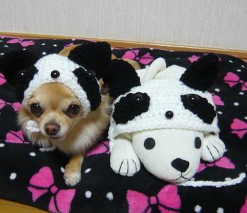 blog2012010702.jpg