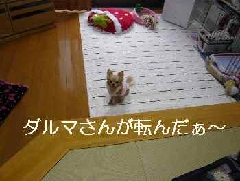 blog2012011802.jpg