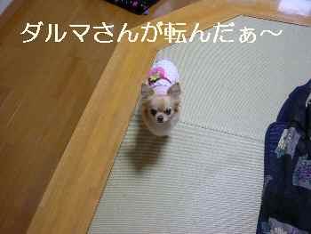 blog2012011803.jpg