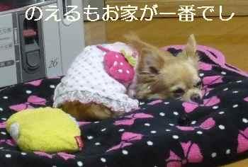 blog2012011901.jpg