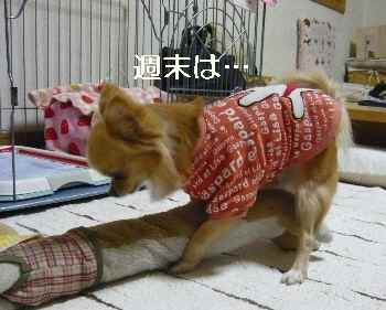 blog2012012201.jpg