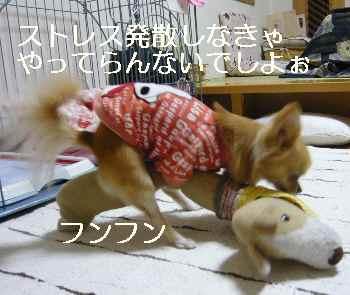 blog2012012202.jpg