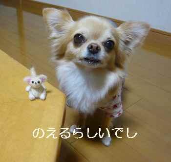 blog2012012501.jpg