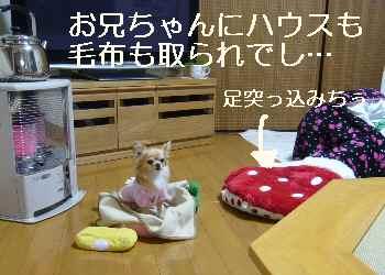 blog2012012707.jpg