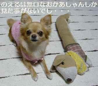 blog2012013002.jpg