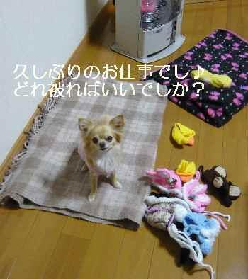 blog2012013104.jpg