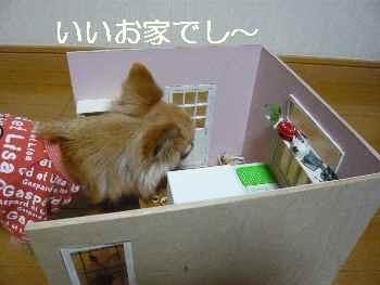 blog2012020104.jpg