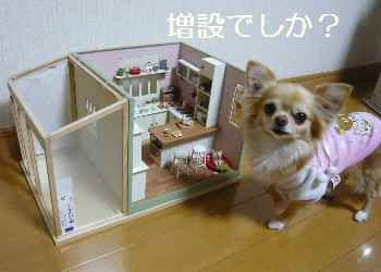 blog2012020305.jpg