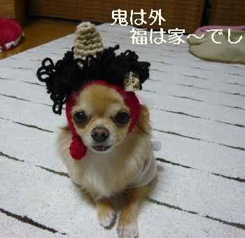 blog2012020307.jpg