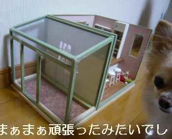 blog2012020501.jpg