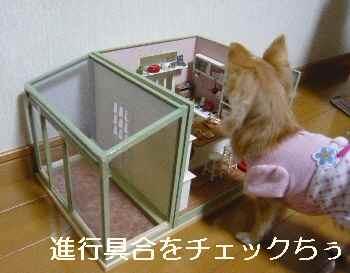 blog2012020502.jpg