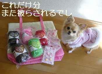 blog2012020806.jpg