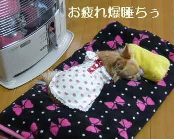 blog2012020808.jpg