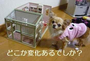 blog2012020901.jpg