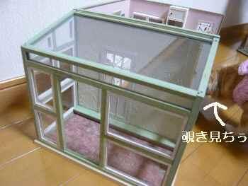 blog2012020902.jpg
