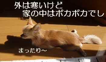 blog2012020903.jpg