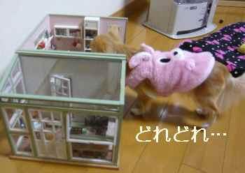 blog2012021006.jpg