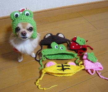 blog2012021202.jpg