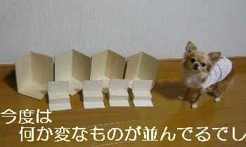 blog2012021401.jpg
