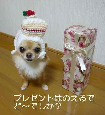 blog2012021402.jpg