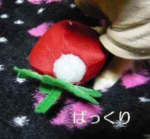 blog2012021603.jpg