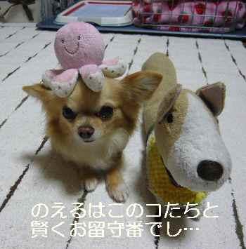 blog2012021902.jpg