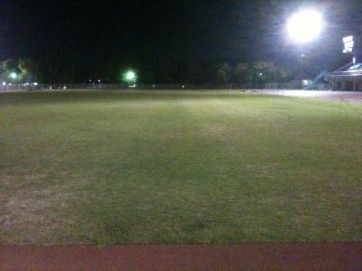 長さが100m以上と判明した芝