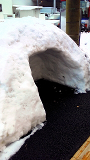 新潟の冬②