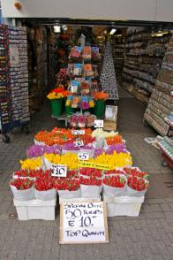 Flower Markt,Amsterdam - 10