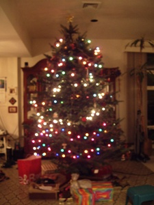 christmastree 122409