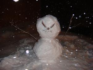 snow man 031010