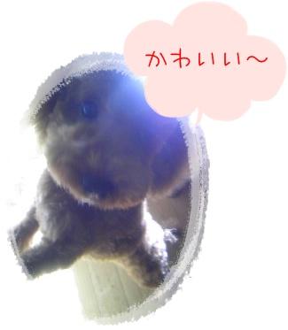 201009277.jpg