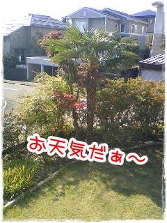 201011062.jpg