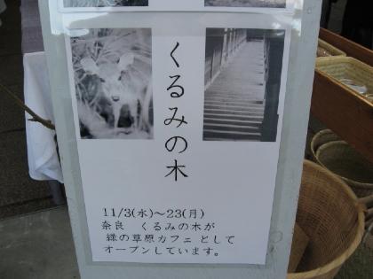 IMG_8226.jpg