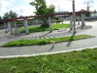 P1170897-AZUKI.jpg