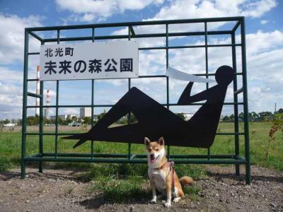 P1170982-AZUKI.jpg