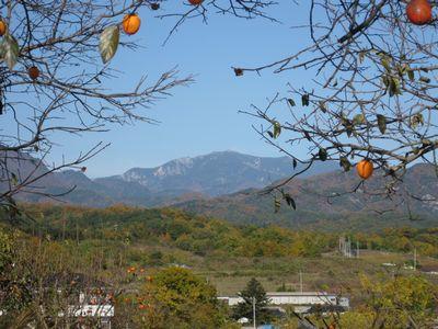秋の金峰山